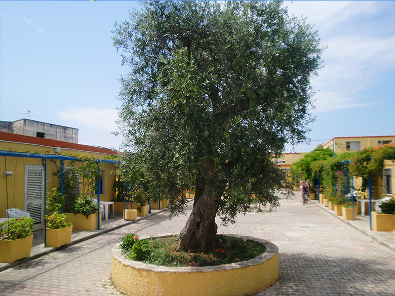 gall-residence-racar-lecce-780_d